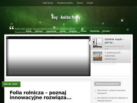 Ciekawostki o róźnej tematyce blog.ambitneseo.pl