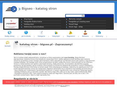 Bigseo.pl - katalog